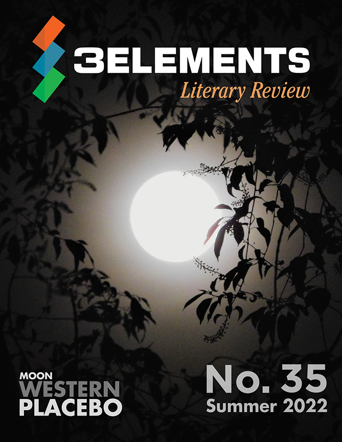 Magazine Issue No. 17, winter 2018, by 3Elements Literary Review